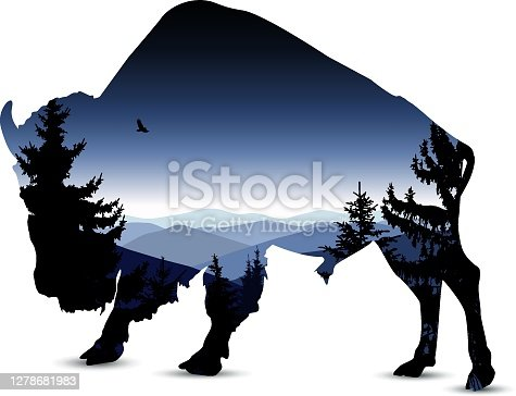 Silhouette of bull with blue evening mountain landscape.