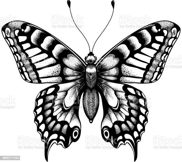 Silhouette of butterfly tattoo butterfly isolated vector sketch of vector id909217434?b=1&k=6&m=909217434&s=612x612&h=ld7kotrwdyzybnomecjinrd8bpsfdgngutixsycg5lc=