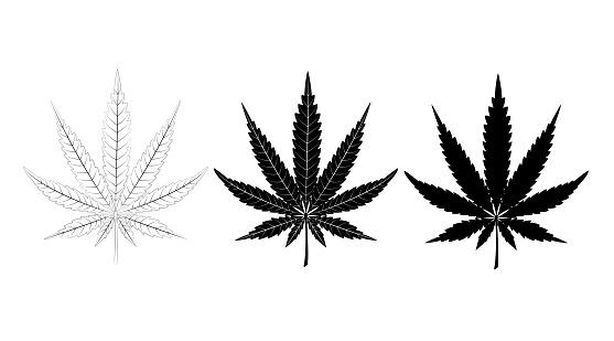 silhouette of cannabis leaf