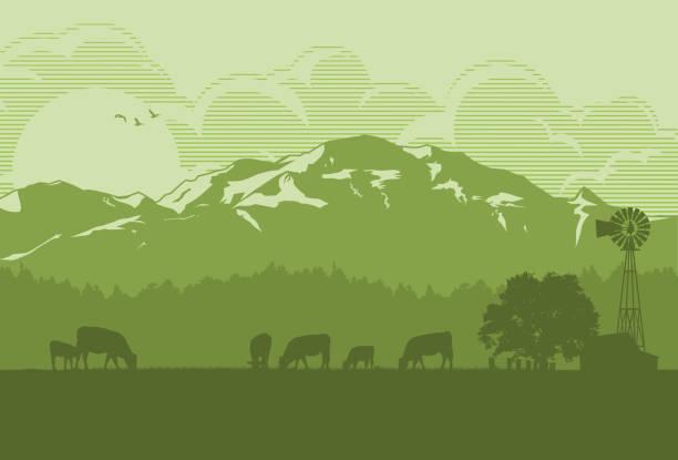 ilustrações, clipart, desenhos animados e ícones de silhueta de gado na zona rural, ilustração vetorial - animais da fazenda