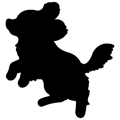 Silhouette of Cavalier King Charles Spaniel jumping