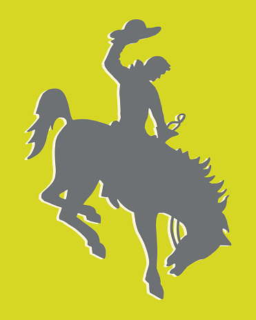 Silhouette of Cowboy and Horse
