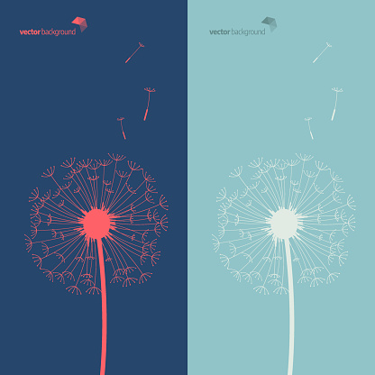 Silhouette of dandelion in blue and green color background