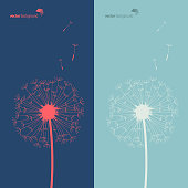 Vector of Silhouette of dandelion in blue and green color background. EPS Ai 10 file format.