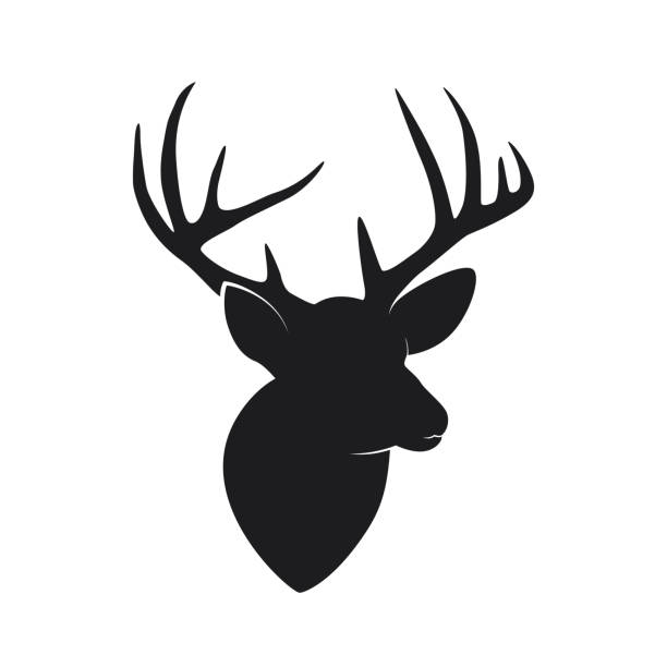 Silhouette of deer head with antlers isolated on white background Vector illustration of Silhouette of deer head with antlers isolated on white background stuffed stock illustrations