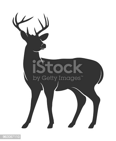 Vector illustration of Silhouette of deer with antlers on white background