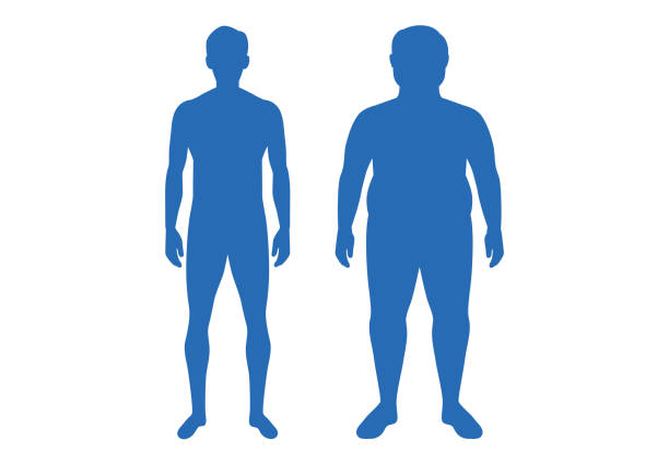 silhouette of difference body between shapely man and fat. - talia tułów stock illustrations