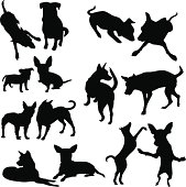 silhouettes of dogs and puppies in different actions