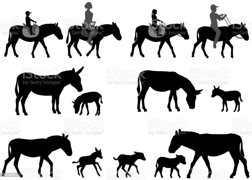 Silhouette of donkey and foal - illustrazione arte vettoriale
