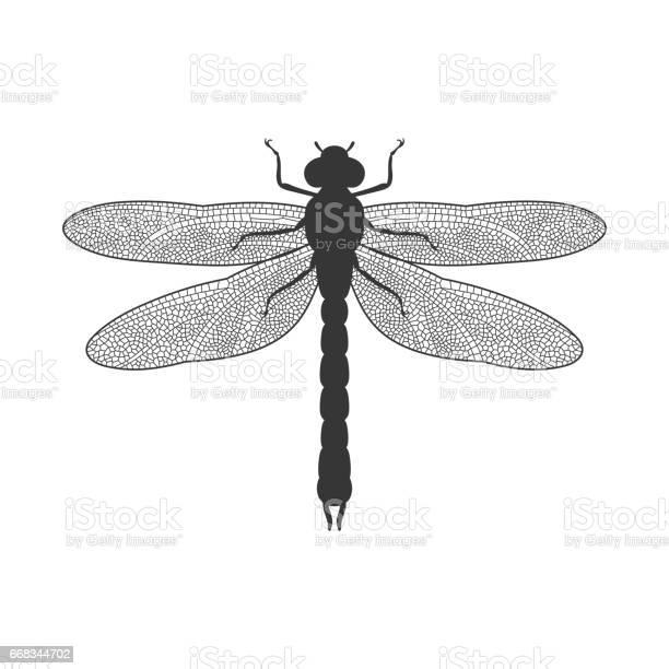 Silhouette of dragonfly vector id668344702?b=1&k=6&m=668344702&s=612x612&h=dt epgu9kiizv017d w5nansggrmicjaa rircjbliq=