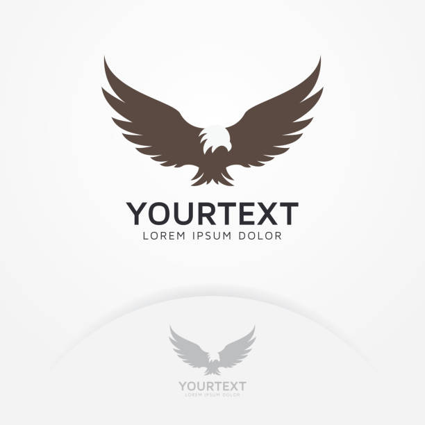 Royalty Free Eagle Clip Art Vector Images Illustrations Istock