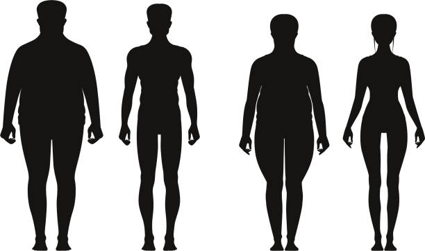 silhouette of fat and thin peoples. weight loss of overweight man and fat woman. vector illustrations isolate - talia tułów stock illustrations