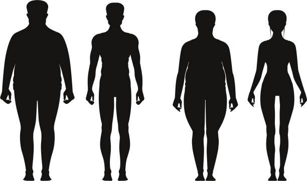 illustrazioni stock, clip art, cartoni animati e icone di tendenza di silhouette of fat and thin peoples. weight loss of overweight man and fat woman. vector illustrations isolate - obesity