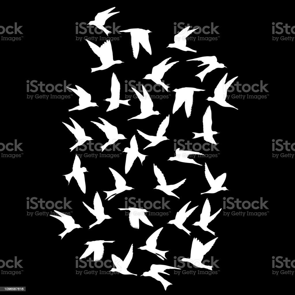 Silhouette of flying birds on black background. Inspirational body flash tattoo ink. Vector. vector art illustration