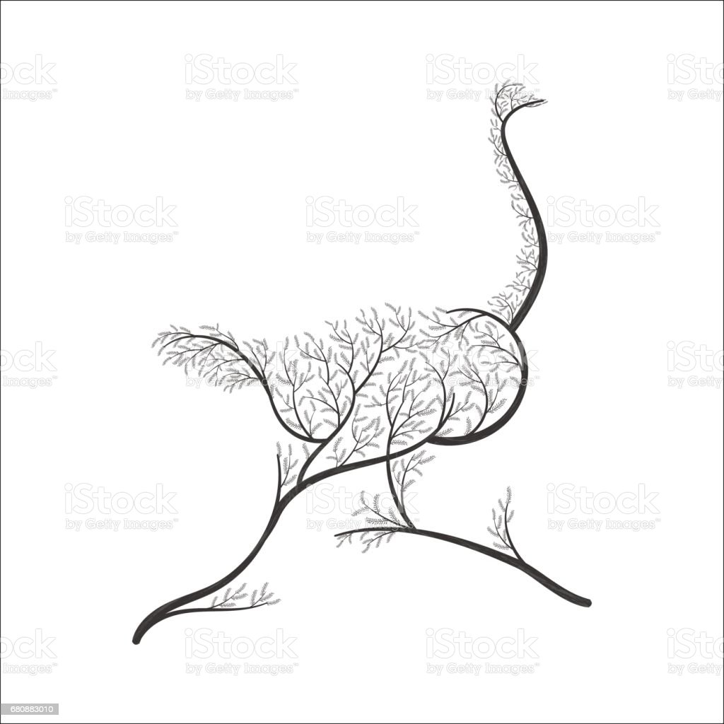 silhouette of ostrich stylized bushes for use as symbols on cards, in printing, posters, invitations, web design and other purposes. royalty-free silhouette of ostrich stylized bushes for use as symbols on cards in printing posters invitations web design and other purposes stock vector art & more images of abstract