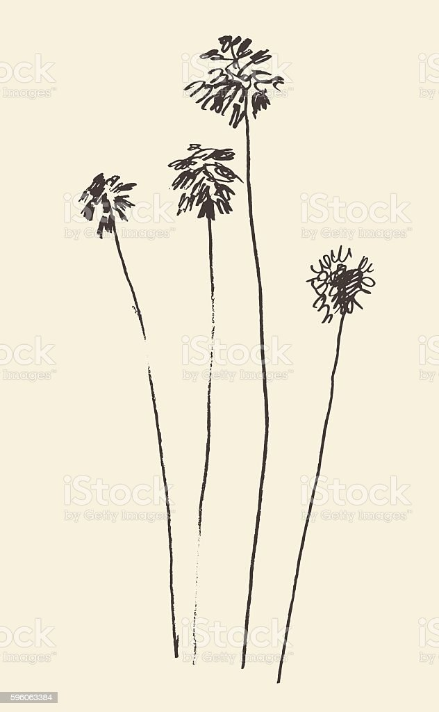 Silhouette of palm trees drawn vector sketch. royalty-free silhouette of palm trees drawn vector sketch stock vector art & more images of abstract