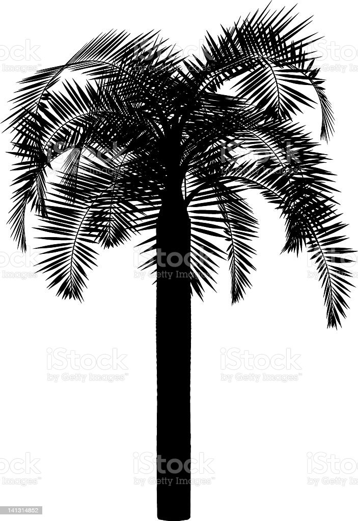 silhouette of palm royalty-free stock vector art