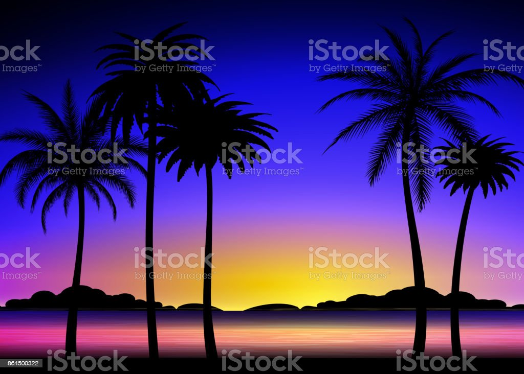 Silhouette of palms on tropical sunset vector art illustration