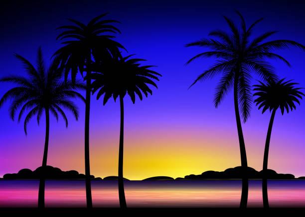 Silhouette de palmiers sur coucher de soleil tropical - Illustration vectorielle