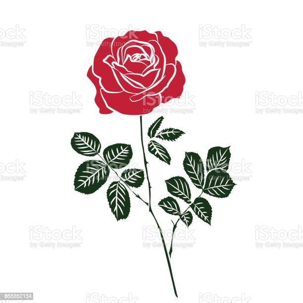 Silhouette of rose vector id855352134?b=1&k=6&m=855352134&s=612x612&h=trjdchroebu9pk8kvxouendqg0frg2 xm1hvyqrgdcc=