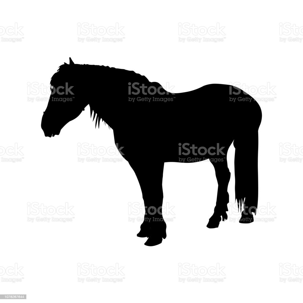 Silhouette Of Shire Draft Horse Stock Illustration Download Image Now Istock