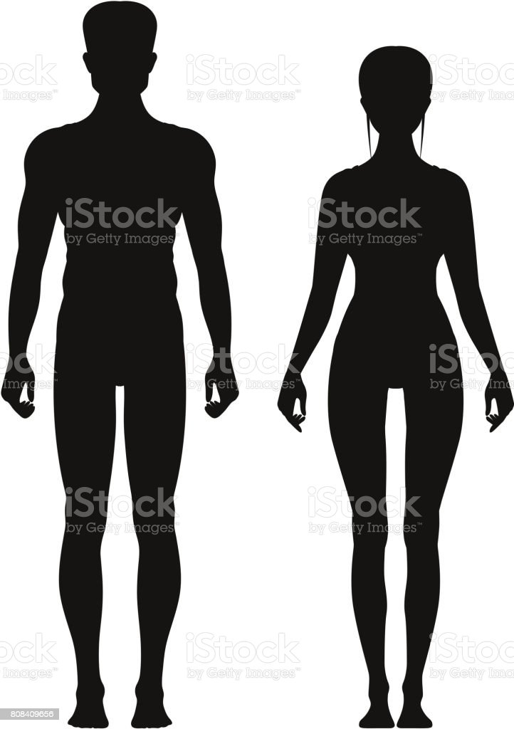 Silhouette of sporty male and female standing front view. Vector anatomy models vector art illustration