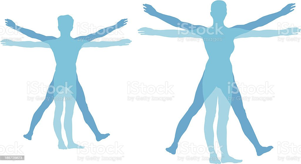 silhouette of the human body vector art illustration