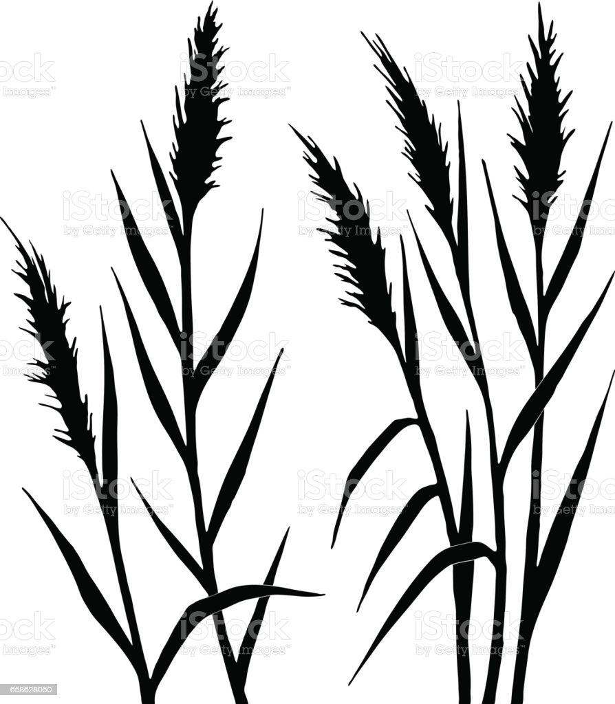 Silhouette Des Blattes Stock Vektor Art und mehr Bilder von ...