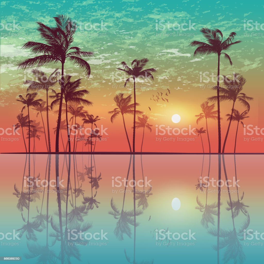 Silhouette of tropical palm trees  at sunset or sunrise, with cloudy sky . Highly detailed  and editable vector art illustration