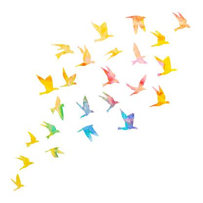 Silhouette Daquarelle Oiseaux De Vol Sur Fond Blanc Inspiration Peinture Aquarelle Corps Mode Flash Autocollant Temporaire Modèle Tatouage Art Vector Vecteurs libres de droits et plus d'images vectorielles de A la mode