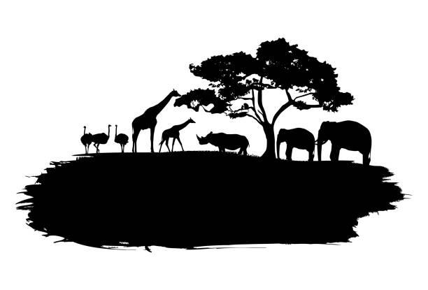 stockillustraties, clipart, cartoons en iconen met silhouet van wildlife dieren in afrika wandelen op splash paint, vector - safari