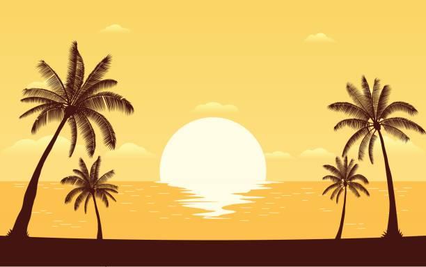 sylwetka palmy na plaży z zachodem słońca niebo - zachód słońca stock illustrations