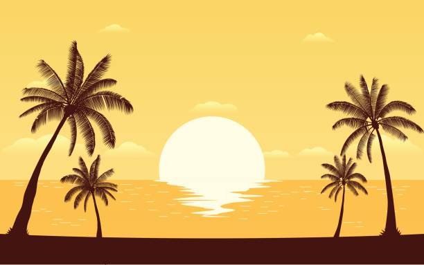 silhouette palm tree on beach with sunset sky - zachód słońca stock illustrations