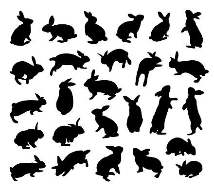 Silhouette rabbit set. Animal flat icon.