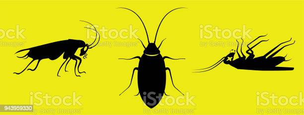 Silhouette roaches side top side dead views black on yellow vector id943959330?b=1&k=6&m=943959330&s=612x612&h=4skuoluqwag ff4yd6ov3gmhn49uvso850zri3hsxbw=