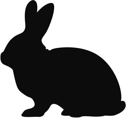 Silhouette shadow illustration of a rabbit on white