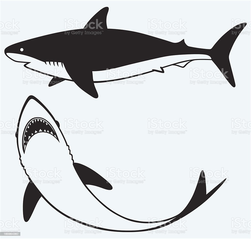 Ilustración de Silueta De Tiburón y más banco de imágenes de ...