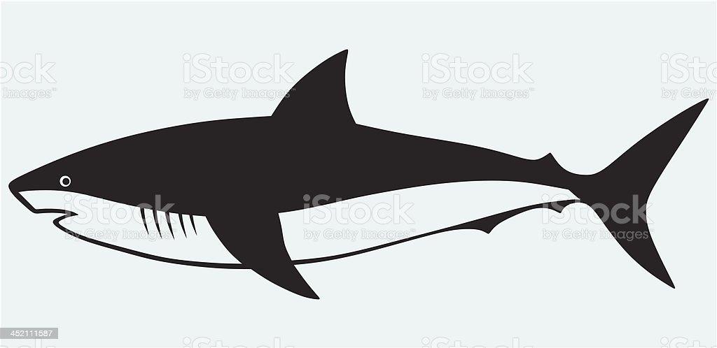 royalty free reef shark clip art vector images illustrations istock rh istockphoto com shark vector image shark vector image