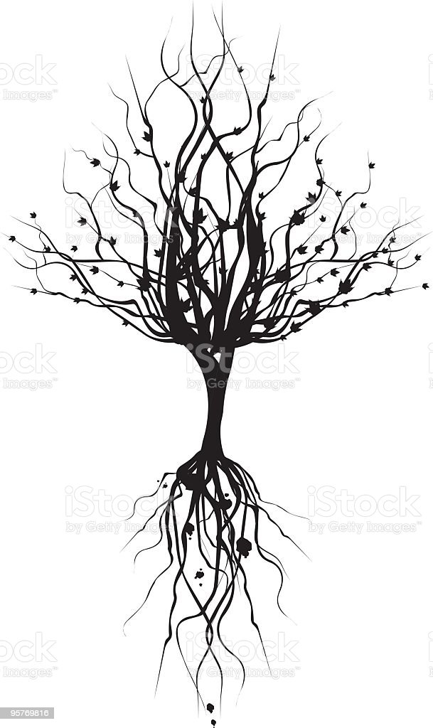 Silhouette Tree and Roots royalty-free stock vector art