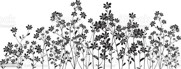 Silhouette wildflowers on white vector id692307260?b=1&k=6&m=692307260&s=612x612&h=2p53cvyeor6pquc4rn63kncoiwyeboyqujj55f4zqbk=