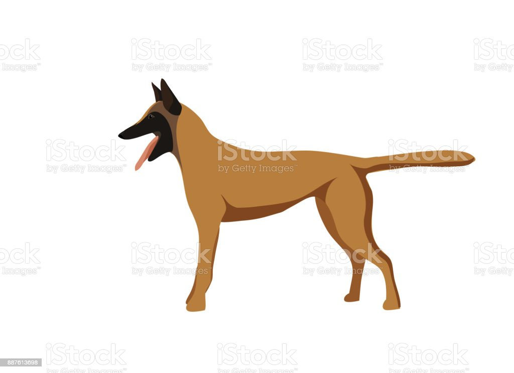 Silhouetted dogs. Belgian Shepherd Dog Malinois. Symbol of the year 2018. Vector. vector art illustration
