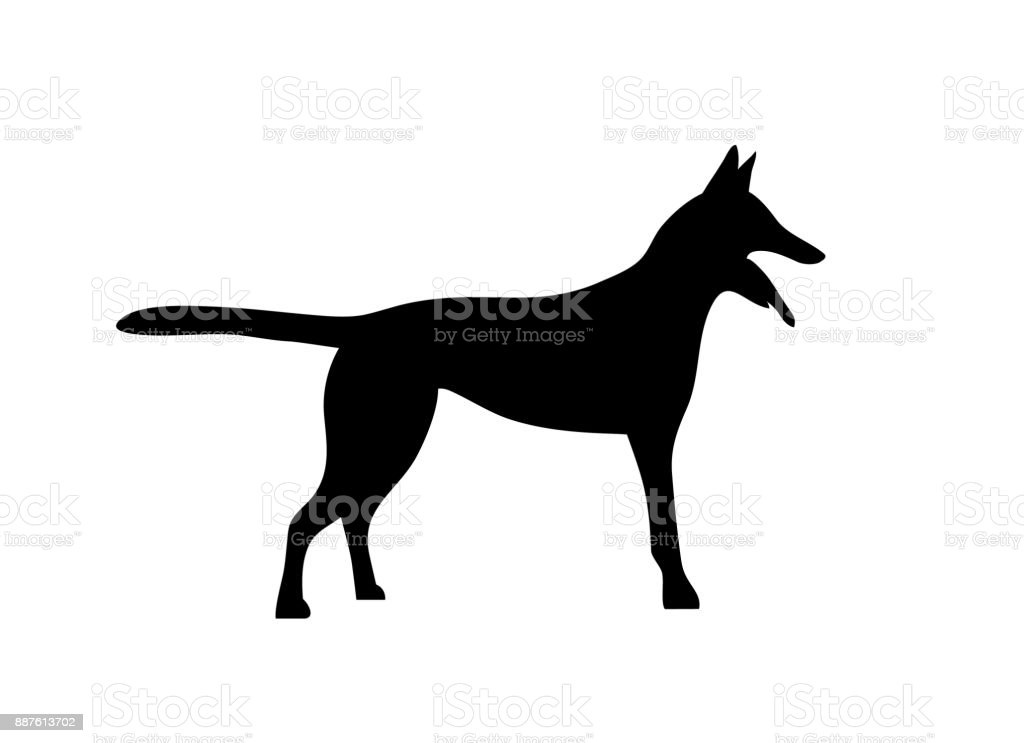 Silhouetted dogs. Belgian Shepherd Dog Malinois. Symbol of the year 2018. Vector. Black and white style vector art illustration