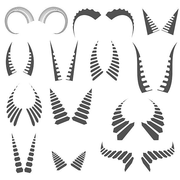 Royalty Free Ram Horns Clip Art, Vector Images