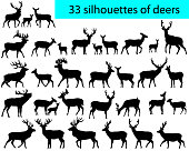 Collection of silhouettes of deers and its cubs