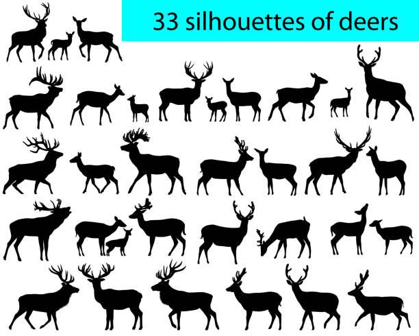 33 silhouetten von hirschen - hirsch stock-grafiken, -clipart, -cartoons und -symbole