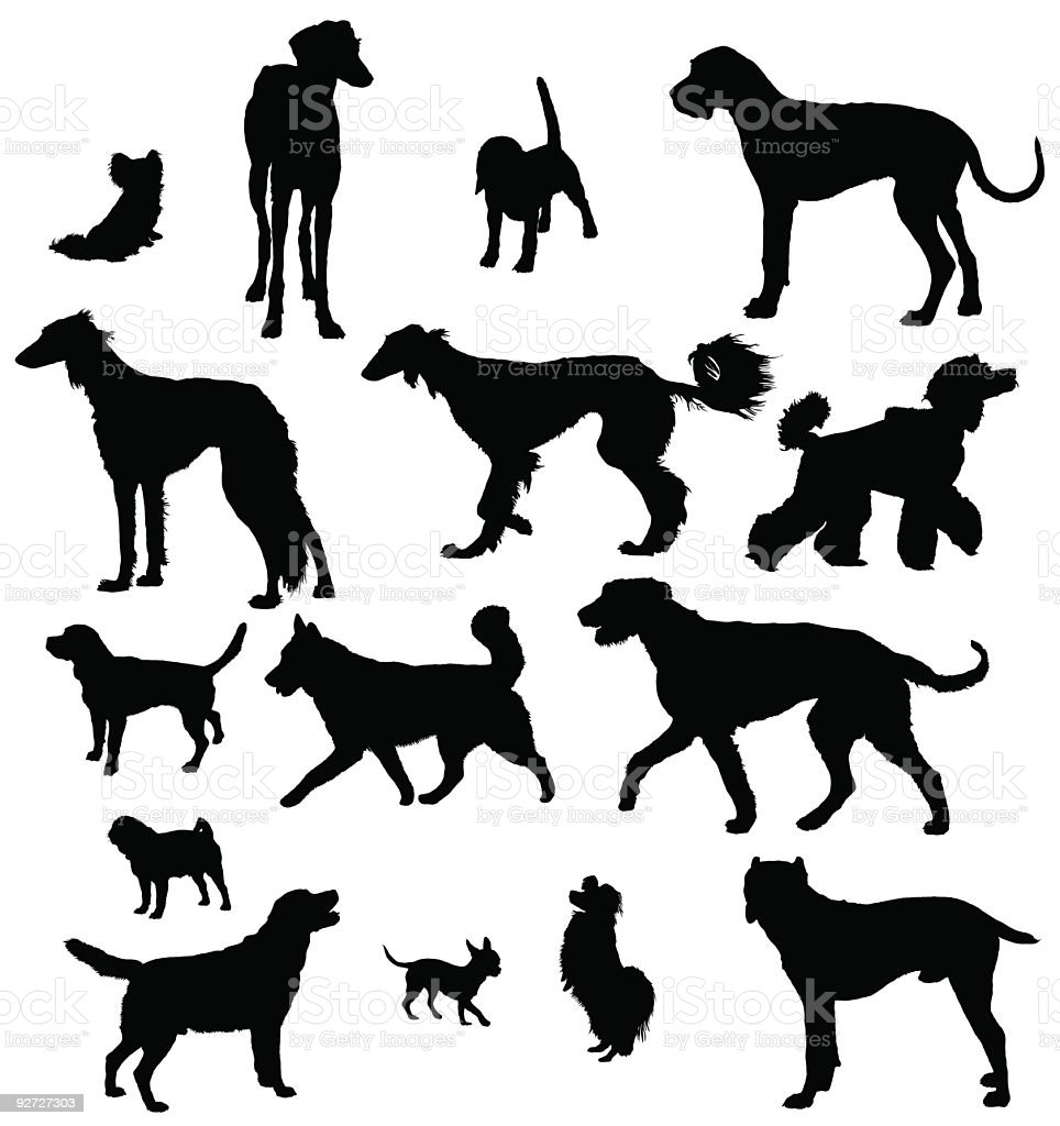 Silhouettes of different breeds of dogs over a white surface vector art illustration