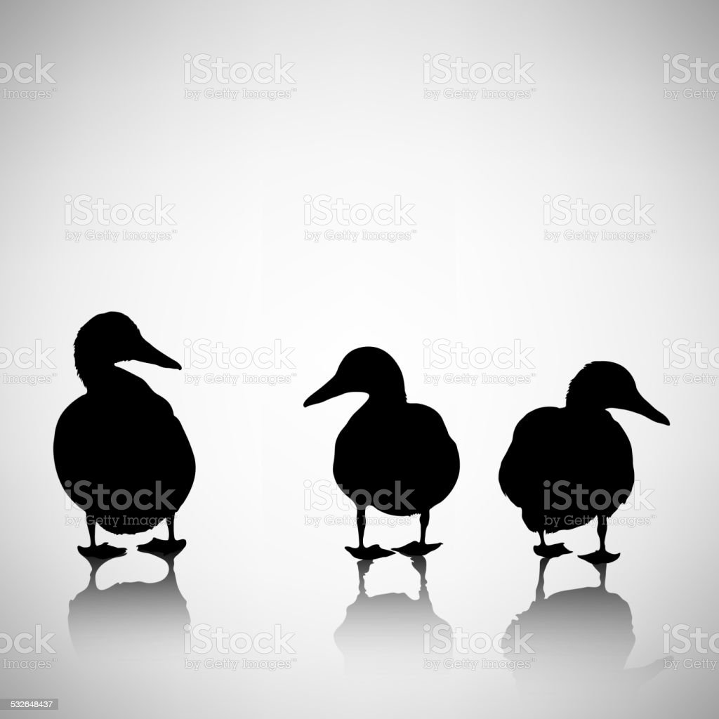 silhouettes of ducks on a light background vector art illustration
