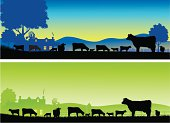 Grazing Cows in silhouette with sunrise and farmyard in the background. Art on easily edited and interchangeable layers. Download also includes a large high-res jpeg.