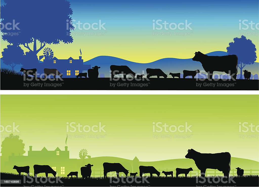 Silhouettes of grazing cows on a farm at dawn and dusk vector art illustration