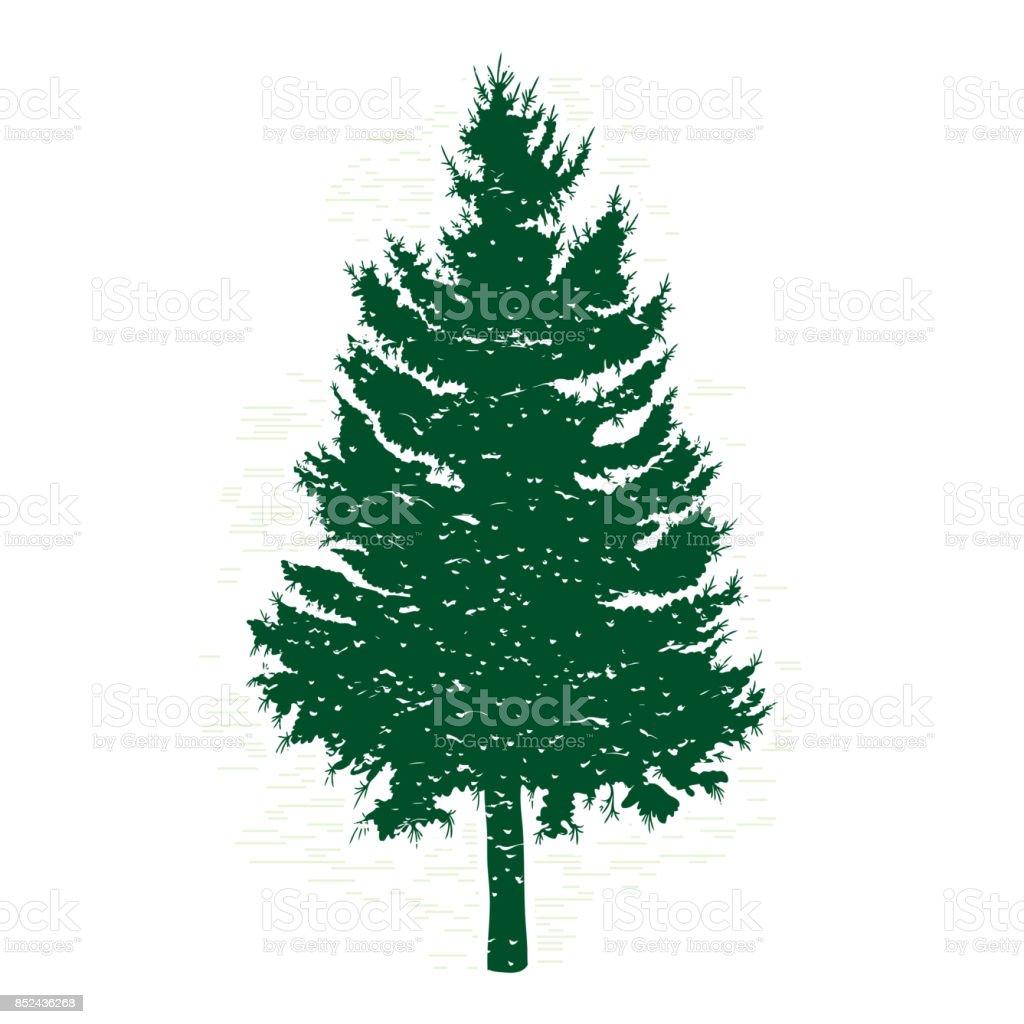 Ilustración de Siluetas De árbol De Pino Verde Ilustración Del ...